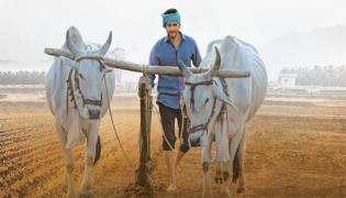 Maharshi Movie Artists in West Godavari Corps - Sakshi