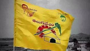 TDP Over Losses In East Godavari District In AP Elections - Sakshi