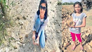 Aswatha Special Story on Fossils Collecting - Sakshi