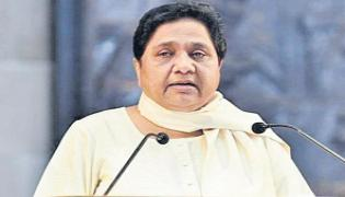 BSP will fight all polls alone - Sakshi