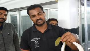 Rescued a Snake From Sleeping Man's Kurta in Maharashtra - Sakshi