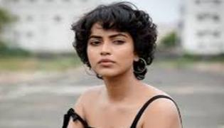 Amalapaul Concentrate On Tollywood Industry - Sakshi