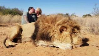 Couple Kissed And Photographed Themselves After Shooting Lion - Sakshi