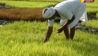 Nizamabad Farmer New Innovative Idea In Agriculture