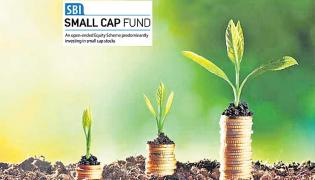 SBI Small Cap Fund Regular Plan Growth - Sakshi