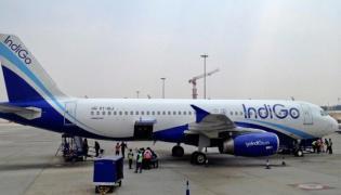 IndiGo forgets luggage of entire Delhi to Istanbul flight, Internet explodes - Sakshi