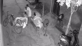 Man Trying To Kidnap Sleeping Child In Punjab Arrested - Sakshi