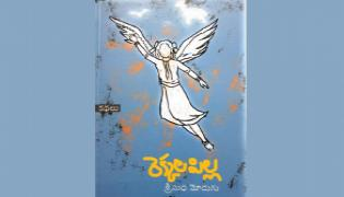 Review on Rekkala Pilla Stories Book - Sakshi