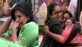 Bigg Boss 3 Telugu Who Get Lucky Chance To Meet Their Families - Sakshi