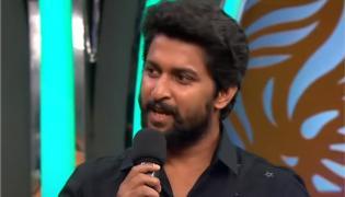 Bigg Boss 3 Telugu Nani As A Guest In Seventh Weekend - Sakshi