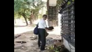 Delhi Man Steals Pot From Vertical Garden - Sakshi