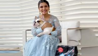 Samantha Urges To Stop Bursting All The Loud Firecrackers On This Diwali - Sakshi