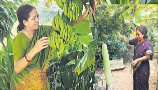 MLA kalavathi Nature Farming - Sakshi