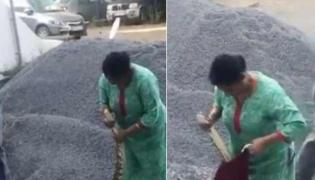 Woman Captures Python In Kochi Netizens Applaud Her - Sakshi