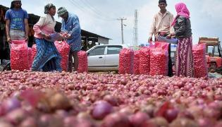 Buyers Left Teary Eyed As Onion  Prices Surge - Sakshi