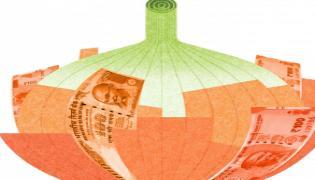 Egyptian Onion Will Arrive Telangana On 15th December - Sakshi
