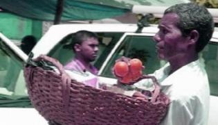 Karnataka Fruit Seller Got Padma Shri Award - Sakshi