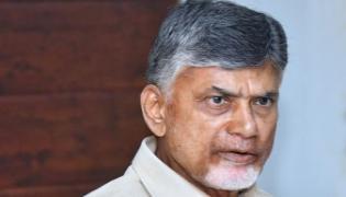Chandrababu Naidu Double Stand Over Legislative Council - Sakshi