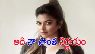 Amala Paul Says Says Dhanush Is Not Reason Her Divorce - Sakshi