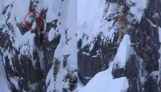 Snowboarder Got Stuck On A Snowy Cliff In Canada - Sakshi