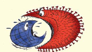 ABK Prasad Writes Guest Column About Actions Taking On CoronaVirus  - Sakshi