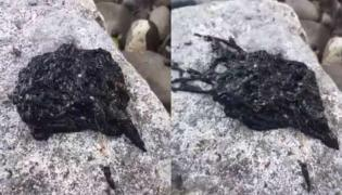 Bizarre Black Venom Video Goes Viral On Social Media - Sakshi