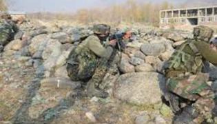 Jaishe Terrorists Killed In Pulwama Encounter - Sakshi