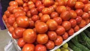Tomato Prices Rise Upto Rs 70 Per Kg In Delhi - Sakshi