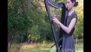 Deer Hanging Out In a harp session Viral Video