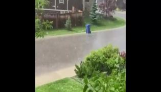 Dustbin Floats away in Water Video Gone Viral