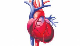 Corona Most Impact On Heart - Sakshi