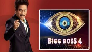 Bigg Boss 4 Telugu: Swathi Dixit Next Wild Card Entry In House - Sakshi