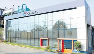 KKR- Bain Capital and Blackstone in race for majority stake in Granules India - Sakshi