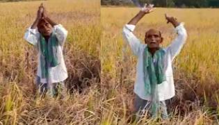 Telangana Farmer Viral Video Over Crop Damage - Sakshi