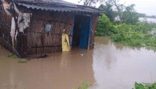 Central Team Visits AP Next Week Over Heavy Rains Losses In Amaravathi - Sakshi
