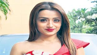 Trisha in the movie remake of Piku - Sakshi