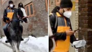 Ecommerce Delivery Boy Rode Horse To Drop Off Parcels In Snowfall - Sakshi