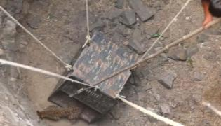 Snake Catcher Team Rescue Leopard Which Is Fell In Well - Sakshi