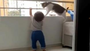 viral video: Pet Cat Warns Year Old Child Who Trying Climbs Balcony Wall - Sakshi