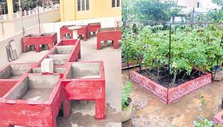 Terrace Garden Is New Status Symbol - Sakshi