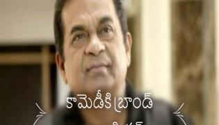 Special Video On Brahmanandam Birthday