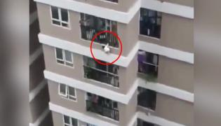 Vietnam Delivery Driver Catches Toddler Who Fell From 12th Storey - Sakshi