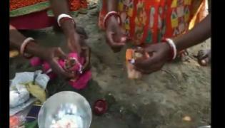 Frog Wedding Video: Tripura People Did Frogs Marriage For Rain Goes Viral - Sakshi