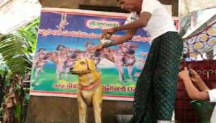 AP: Man Erects Bronze Statue Of His Late Dog on Death Anniversary - Sakshi