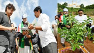 Bollywood Star Amitabh Bachchan Participated in Green India Challenge - Sakshi