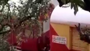 Viral Video: Train Passing Through Goa Waterfall In Heavy Rain
