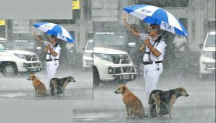 Traffic Constable Tarun Kumar Humanity Towards Dogs In Rain At Kolkata - Sakshi