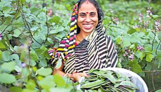 Role of Rural Women In Agriculture And Their Methods Of Cultivation - Sakshi