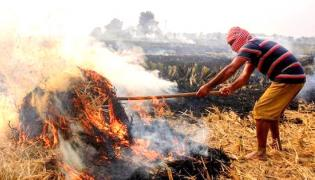 Neighbouring States Stubble Burning Significantly Contributes To Air Pollution In Delhi - Sakshi