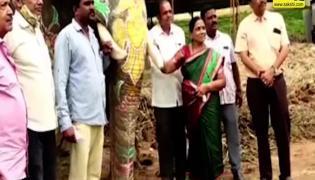 Viral Video: Dasara Elephant Ashwathama Refuses to leave Mysore Palace